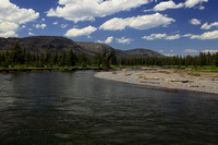Along The Thorofare River in YNP