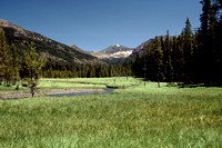 Upper Grinnell Creek Meadows